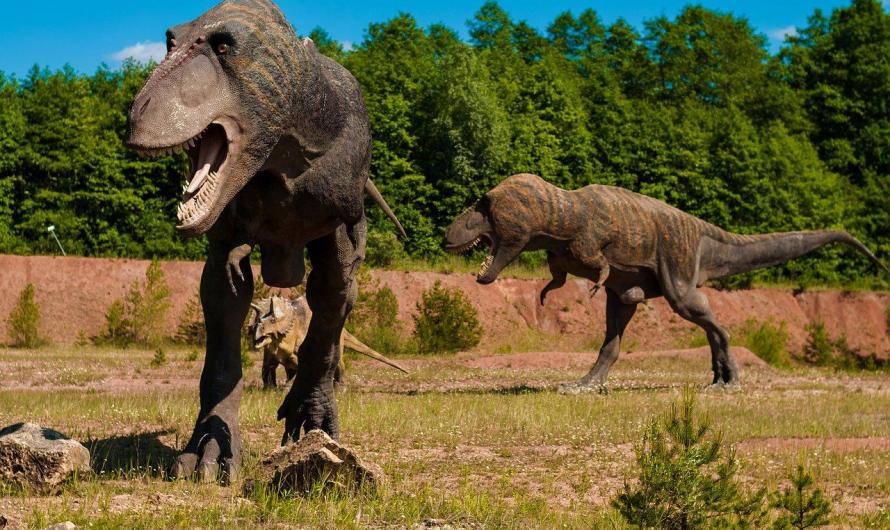 Comment enseigner l'histoire des dinosaures à votre enfant ?